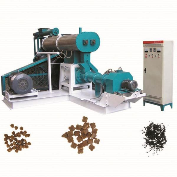Automatic Fish Feed Extruder Machine Processing Line
