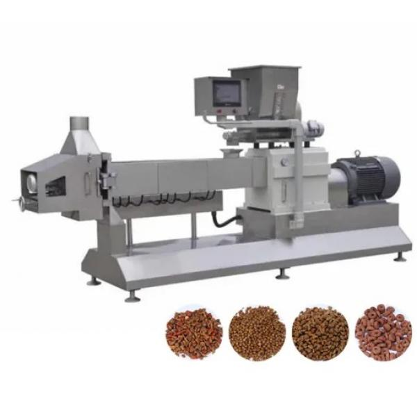 Wet Dry Floating Sinking Fish Feed Pellet Production Extruder Machinery Plant